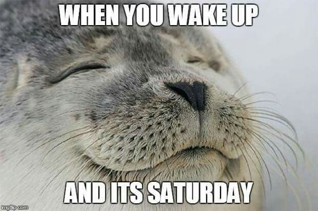Sooo Glad That This Week Is Over And It S Saturday Funny Pictures Super Funny Funny Memes