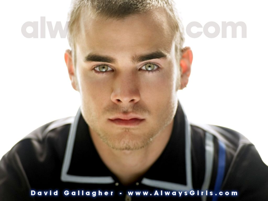 david gallagher csi miami