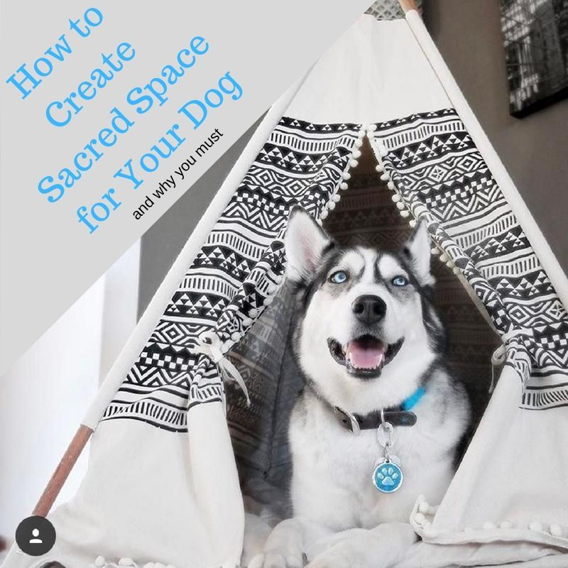 How to Create A Sacred Space for Your Dog (AND Why You