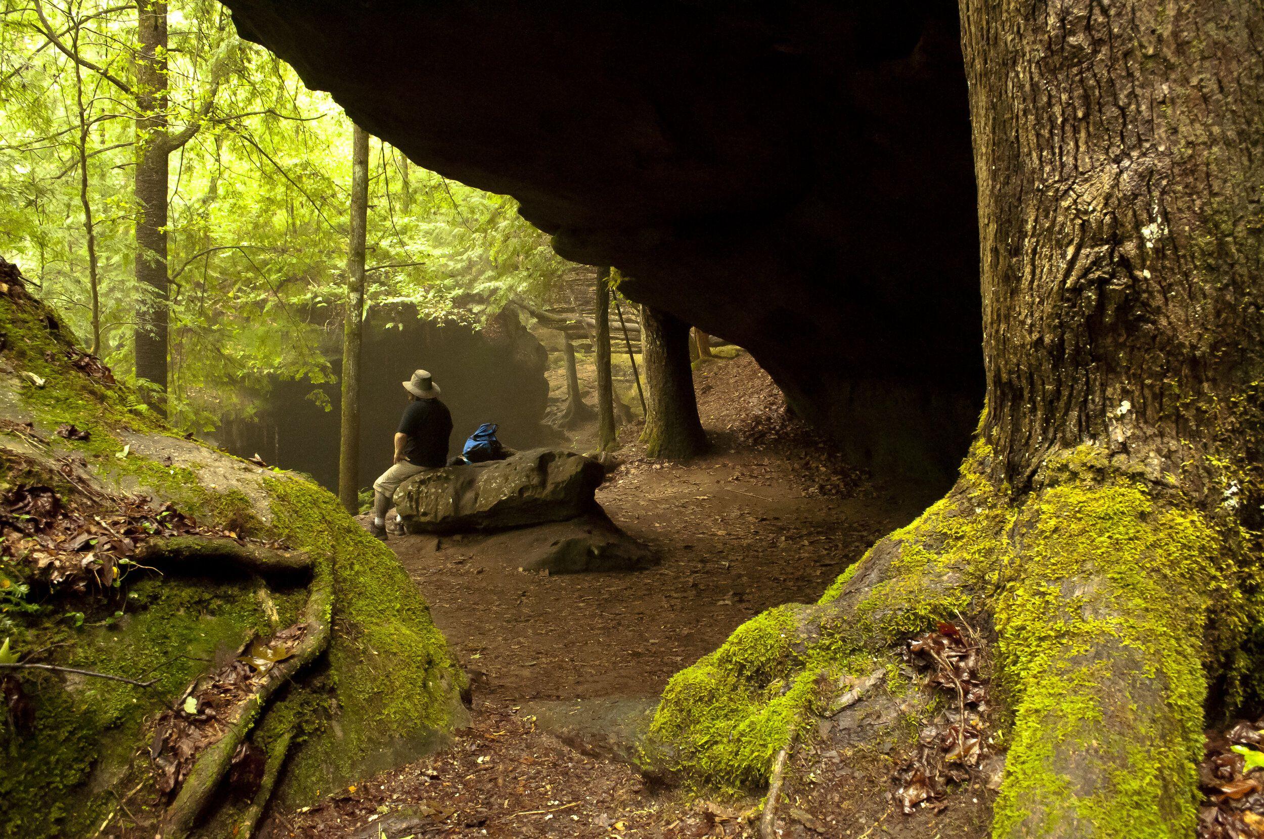 National Natural Landmark Dismals Canyon In 2020 Natural Landmarks National Parks State Parks