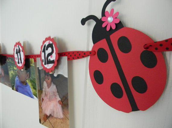 Ladybug Birthday Party First Year Photo