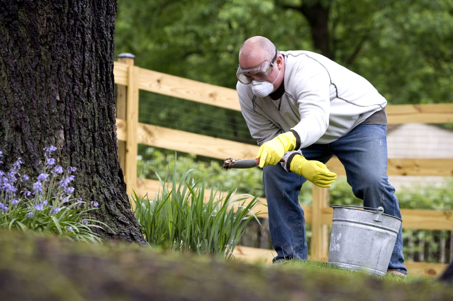 Cultivate A Healthy Lawn By Following A Fertilizing Schedule