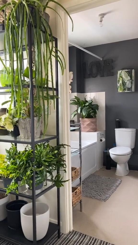 Photo of beautiful Houseplants for Your Bathroom ideas