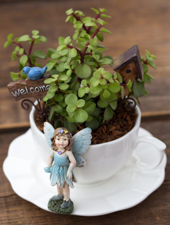 How to Make a Teacup Fairy Garden is part of Simple Fairy garden - Inside In this post, learn how to make a magical teacup fairy garden for your home with succulents, a teacup and saucer, and fairy garden miniatures  Several years ago, my kids and I were eating