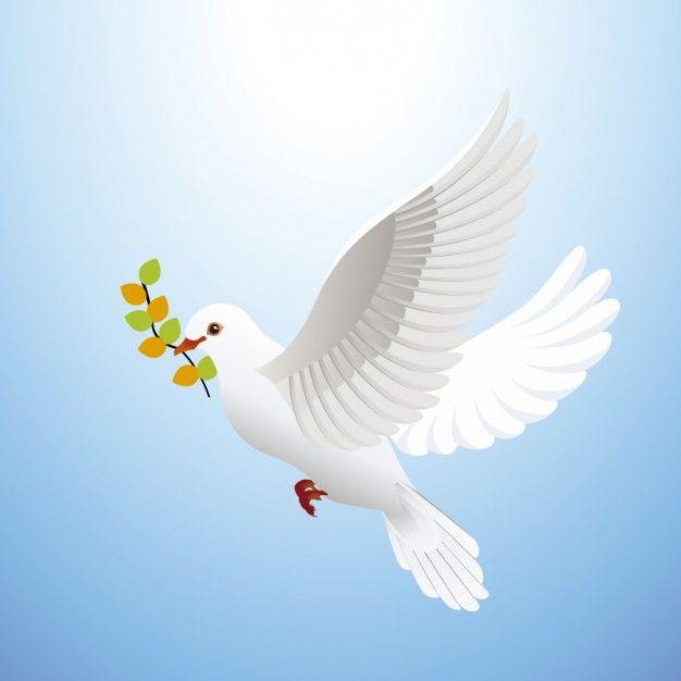 Freepik Risorse Grafiche Per Tutti Peace Dove Beautiful Birds Vector Free