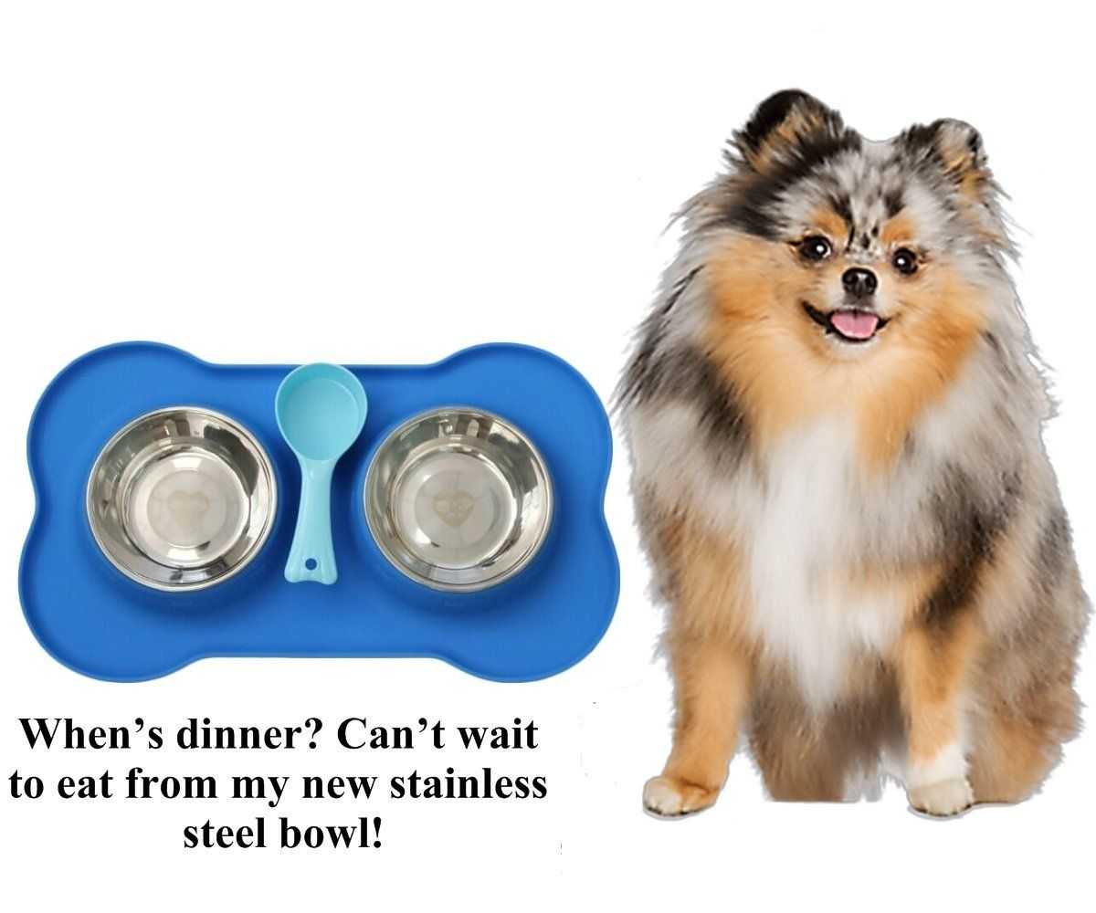 Buy Dog Bowls For Pets At Home Explore Usa Largest Pet Shop Offeing Fast Delivery And Dogs Bowls At Best Prices Dog Bowls Puppy Food Bowl Dog Feeder