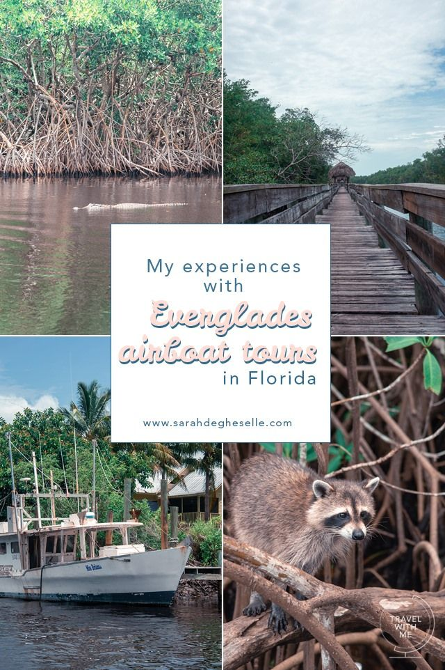 , My experiences with Everglades airboat tours in Florida United States, My Travels Blog 2020, My Travels Blog 2020