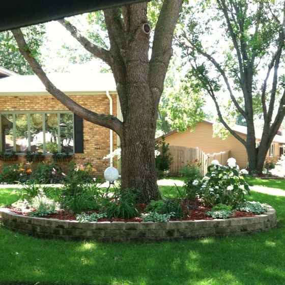 Brick Around Shed With Mulch And Flowers: Inspiration For Flower Bed Around The Tree In The Front