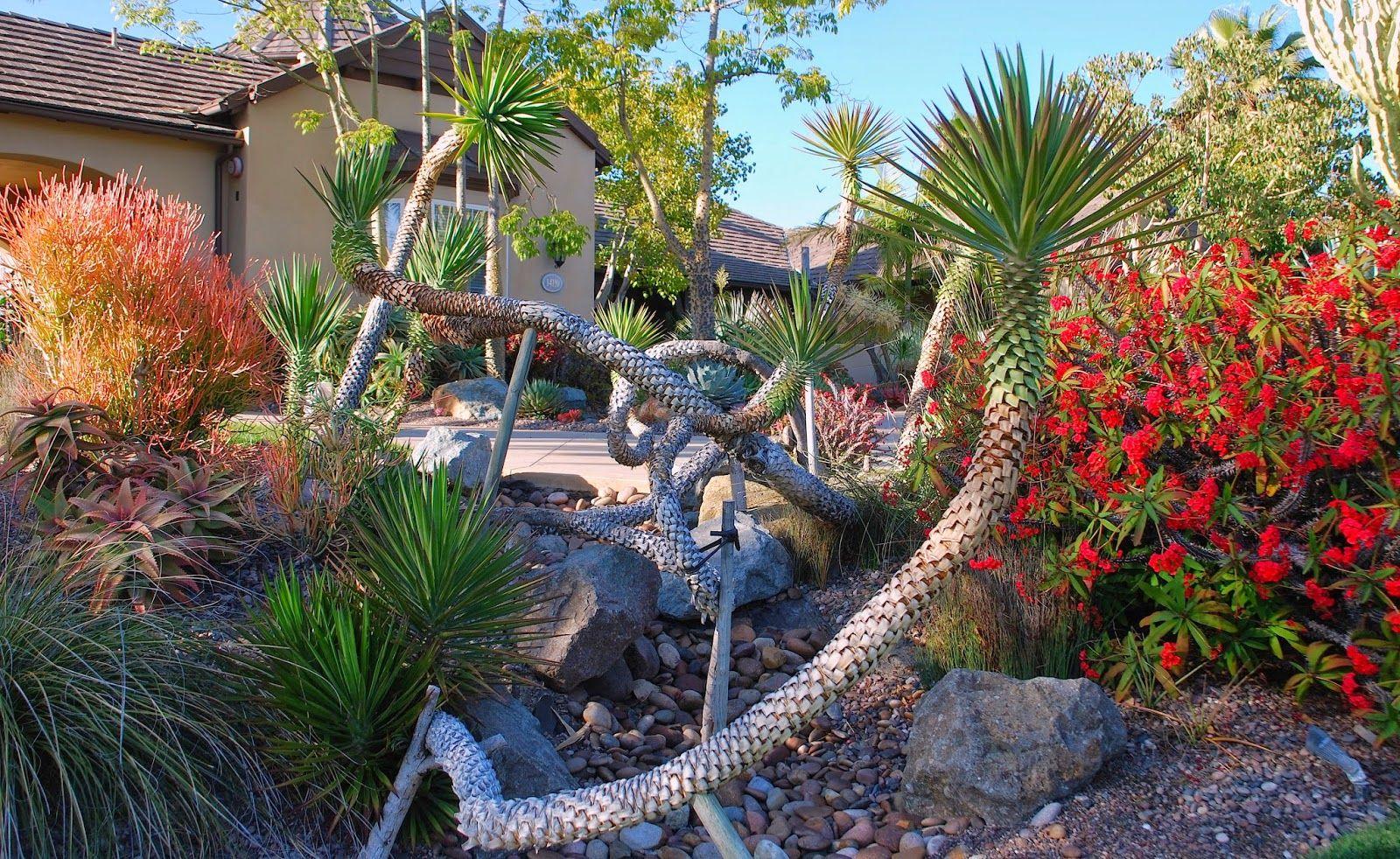 Gardens By Jenise | Garden plants design, Australian ...