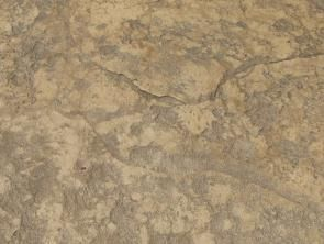 Stamped Concrete Finishes Stamped Concrete Concrete Color Stained Concrete