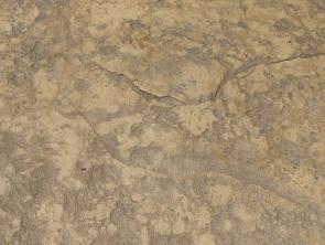 Sandstone Stamped Concrete  STAMPED CONCRETE  SEAMLESS   Pool  Stamped concrete Stamped