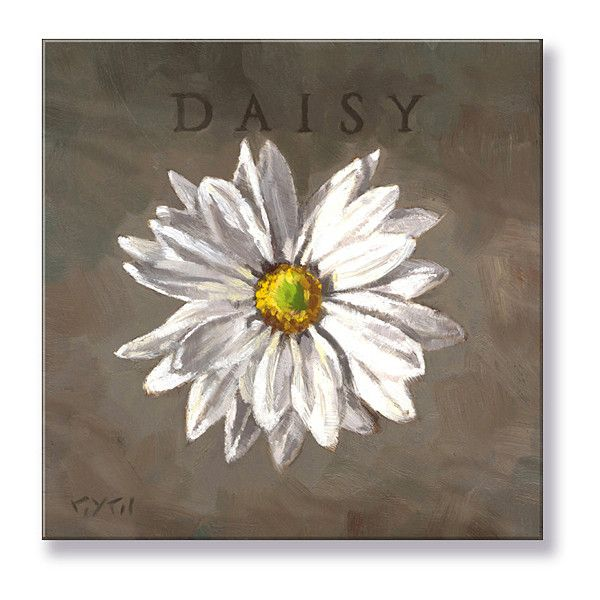 Darren Gygi Home Collection Daisy Giclee Canvas 24 Aud Liked On Polyvore Featuring