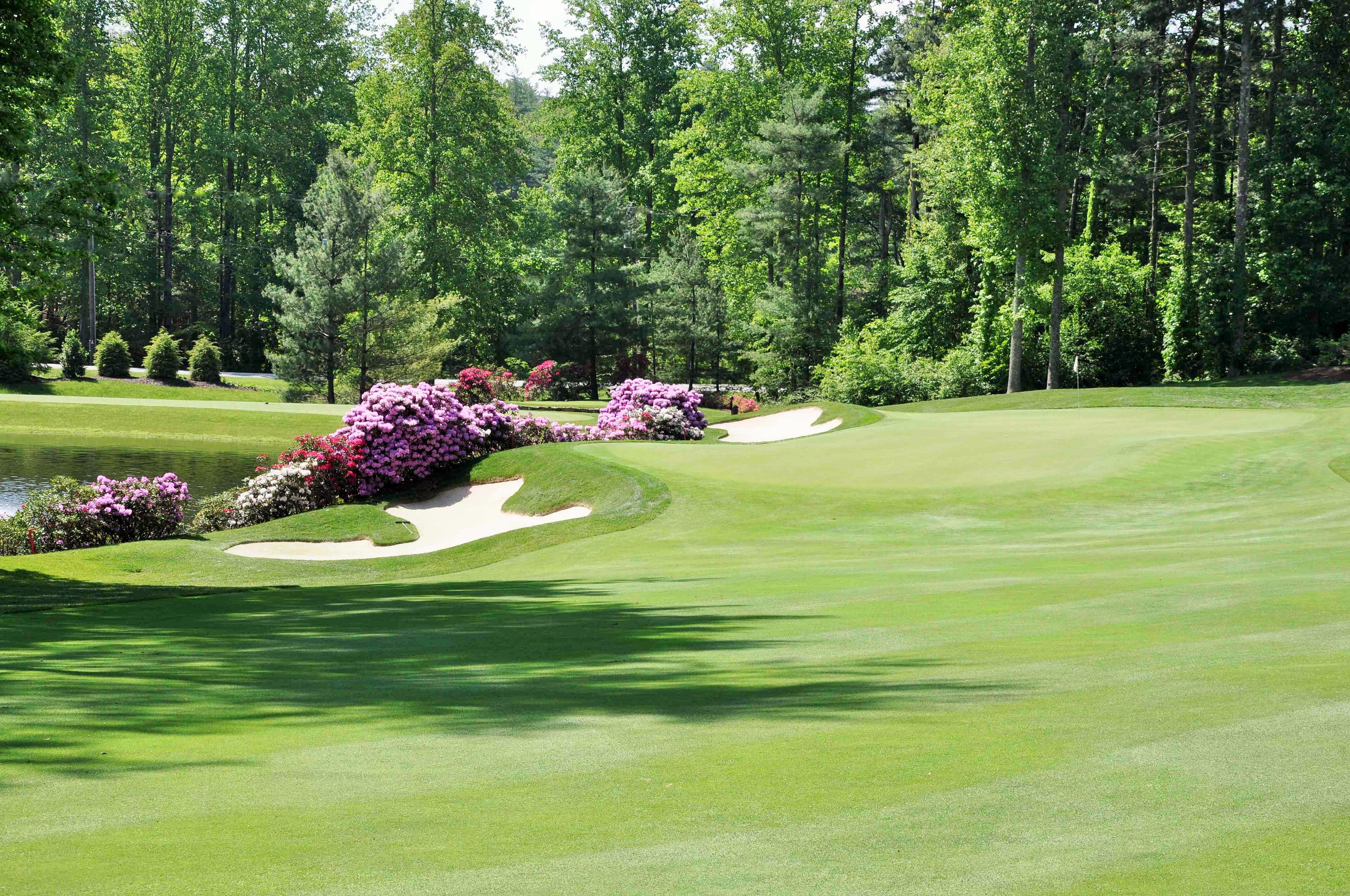 24+ Champion hills golf club north carolina ideas