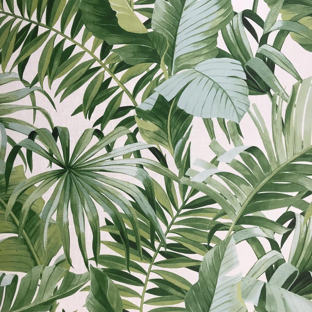 Fd24136 Palm Leaves Banana Leaf White Green Tropical Wallpaper Tropical Wallpaper Plant Wallpaper Leaf Wallpaper