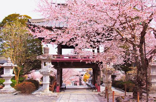 Tumblr Japan Dream Vacations Life Is Beautiful