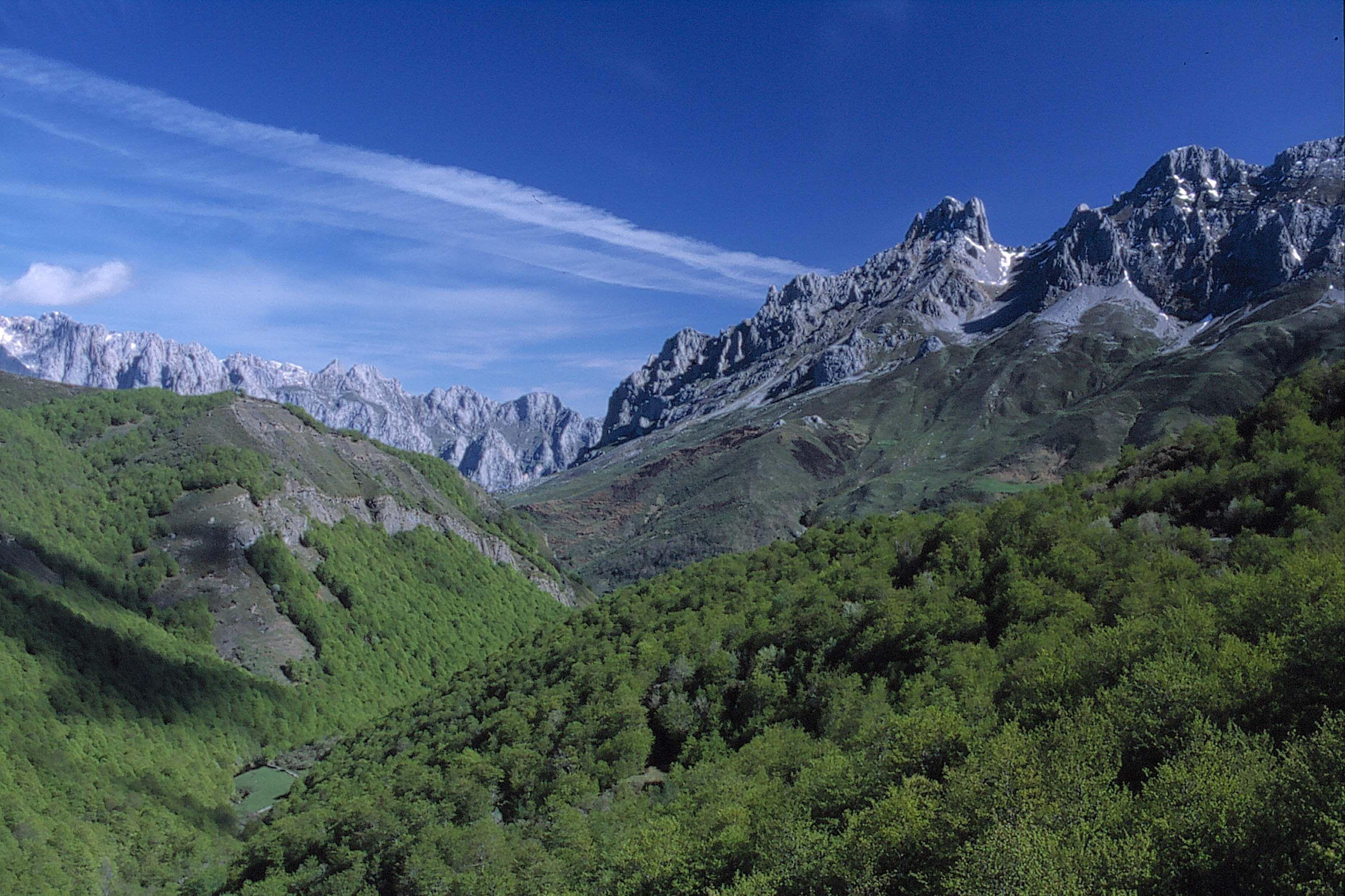 Picos de Europa, Galicia, Spain