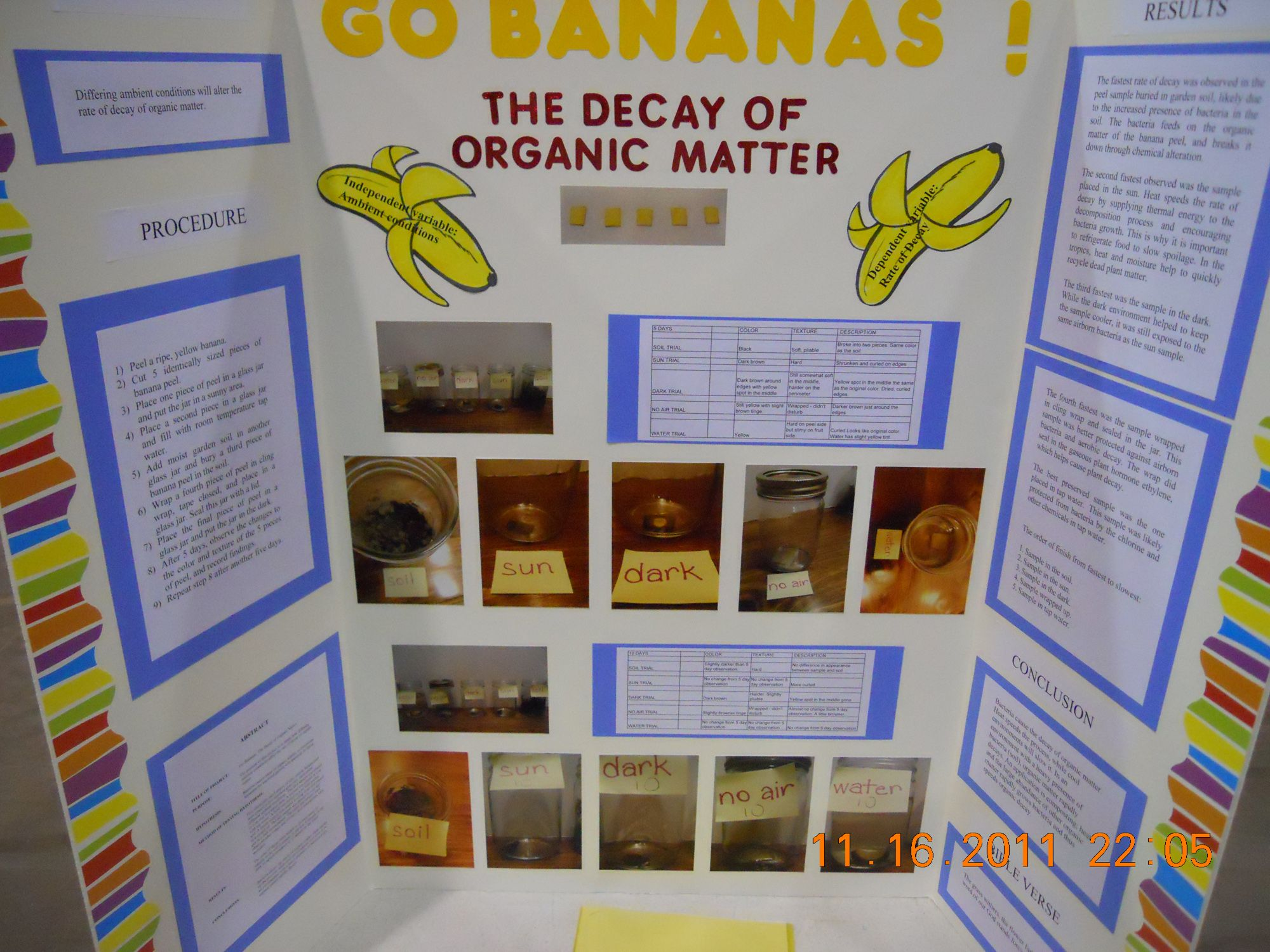 Science Projects Presentation Suyhi Margarethaydon Com