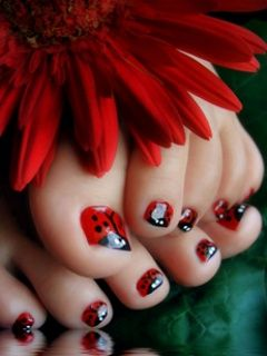 Ladybug toes! @Callista P. - you so have to do this to Bella's toes for Cece's party!