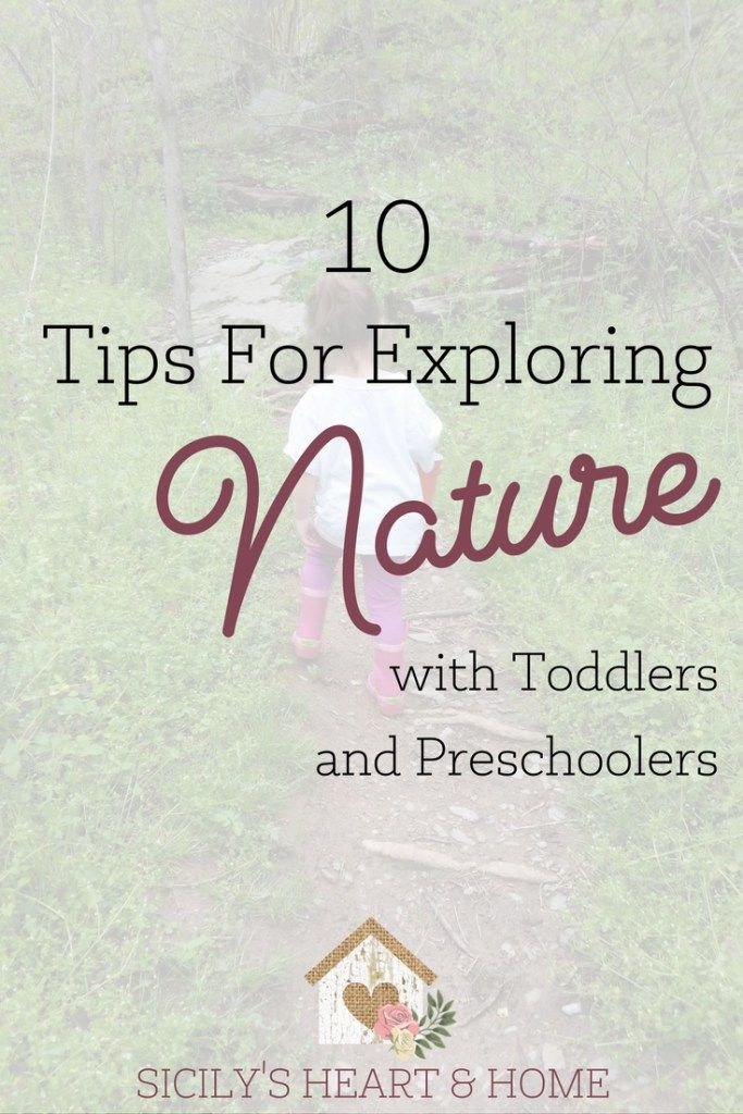 10 tips for exploring nature with kids home schooling. Black Bedroom Furniture Sets. Home Design Ideas