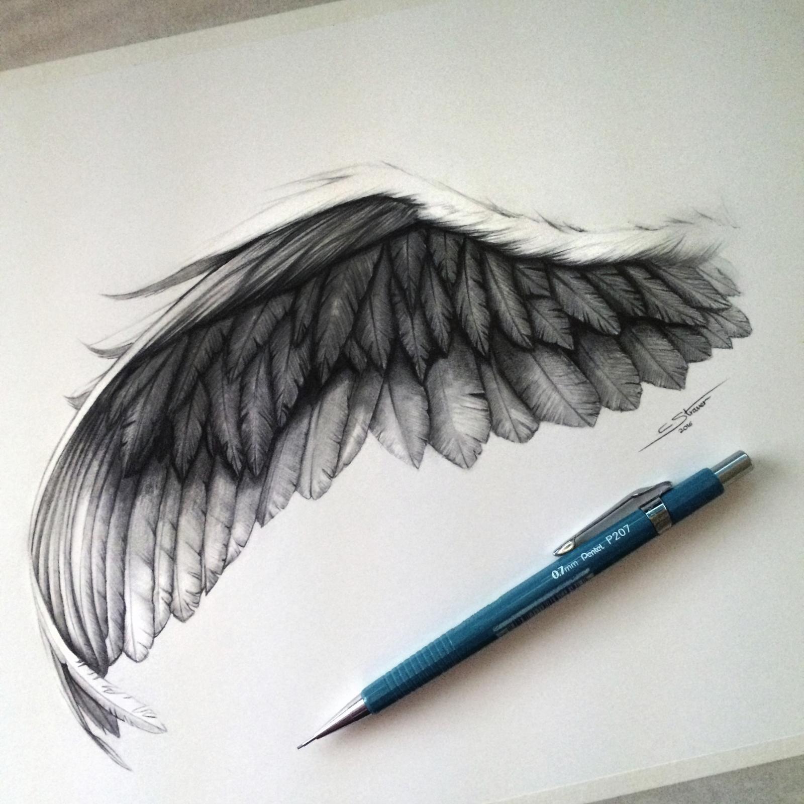 Wing Drawing | Alas de ángel negro, Ángeles negros y Alas de ángel