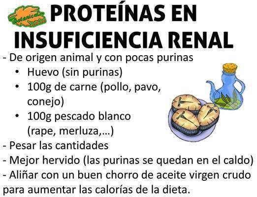 Nutricion en insuficiencia renal cronica