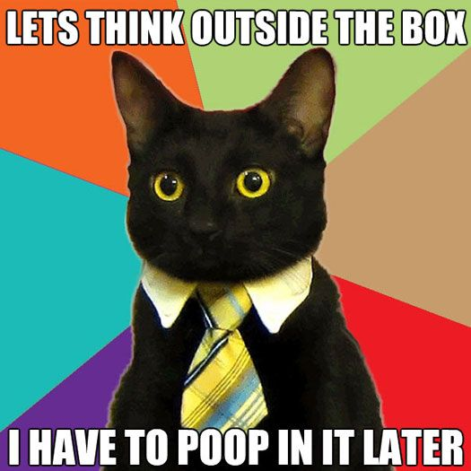 lets think outside the box I have to poop in it later. black cat