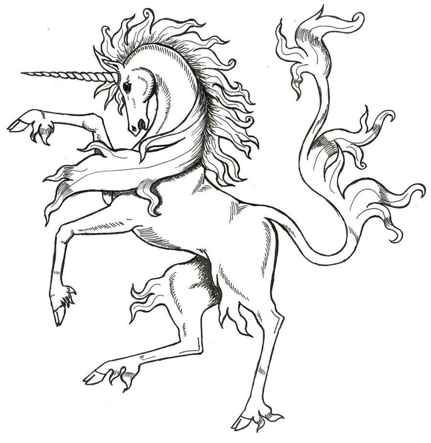 Medieval Unicorn By Tana San On Deviantart Unicorn Fantasy Myth