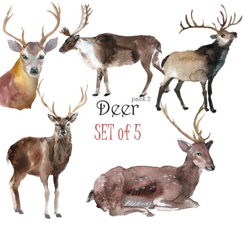 deer pack 2 clip art by yes foxy on sale regular price 8 on - Reindeer Images 2