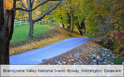 Top 10 Places To See Fall Foliage In Wilmington And The Brandywine