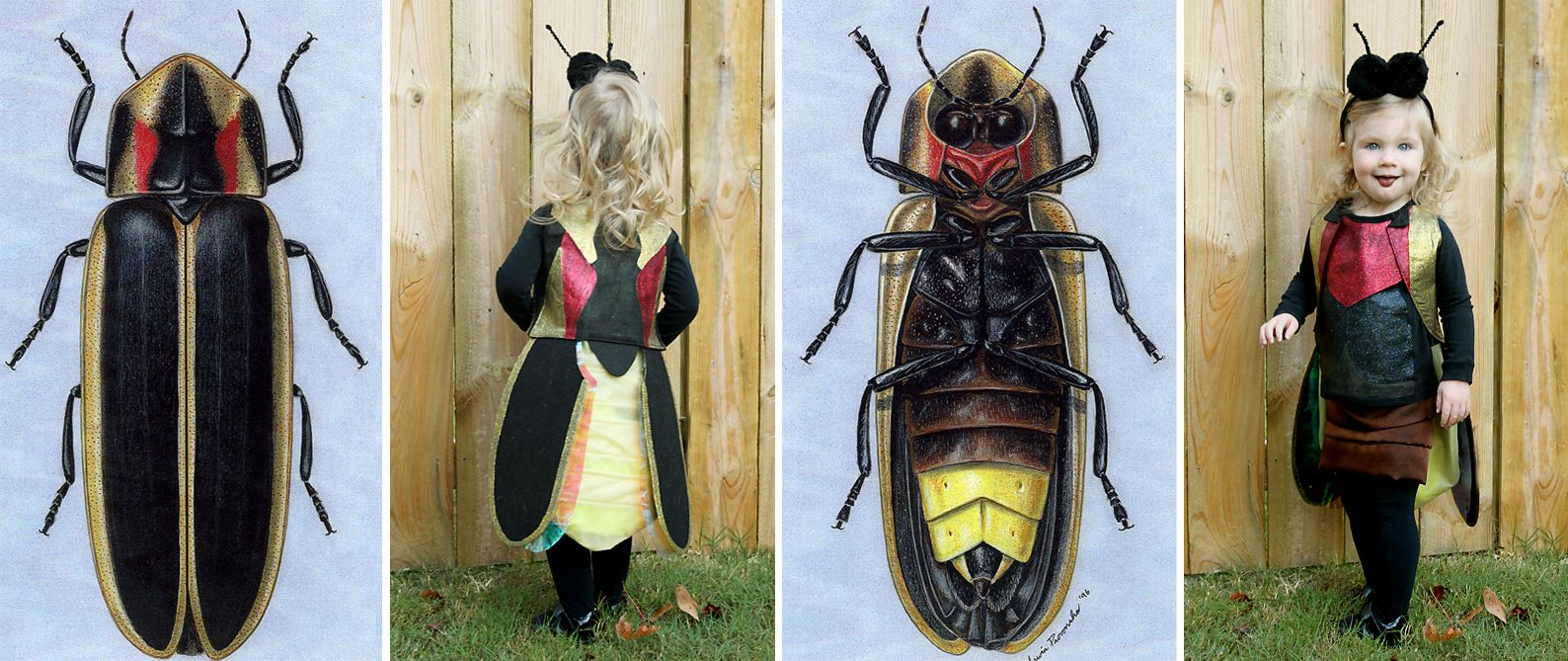 Longhorn beetle wings dress