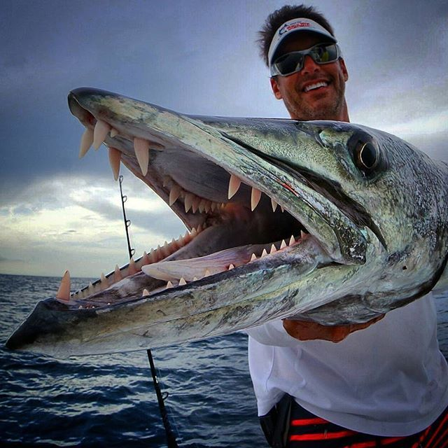 Peter Miller reeling in a snaggle tooth barracuda! # ...
