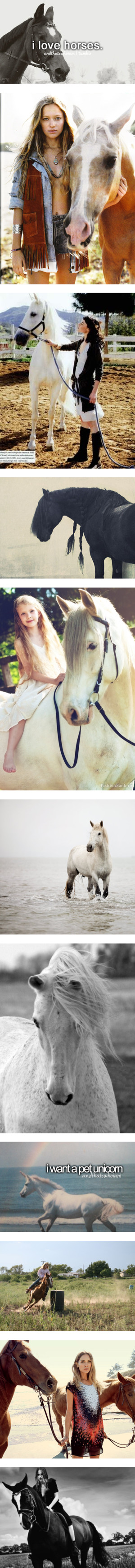 """I love Horses"" by friedii ❤ liked on Polyvore"