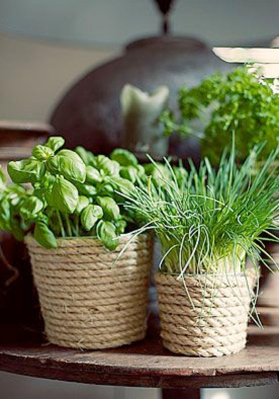 Planter Herbes Aromatiques Jardiniere comment planter des herbes aromatiques en jardinière