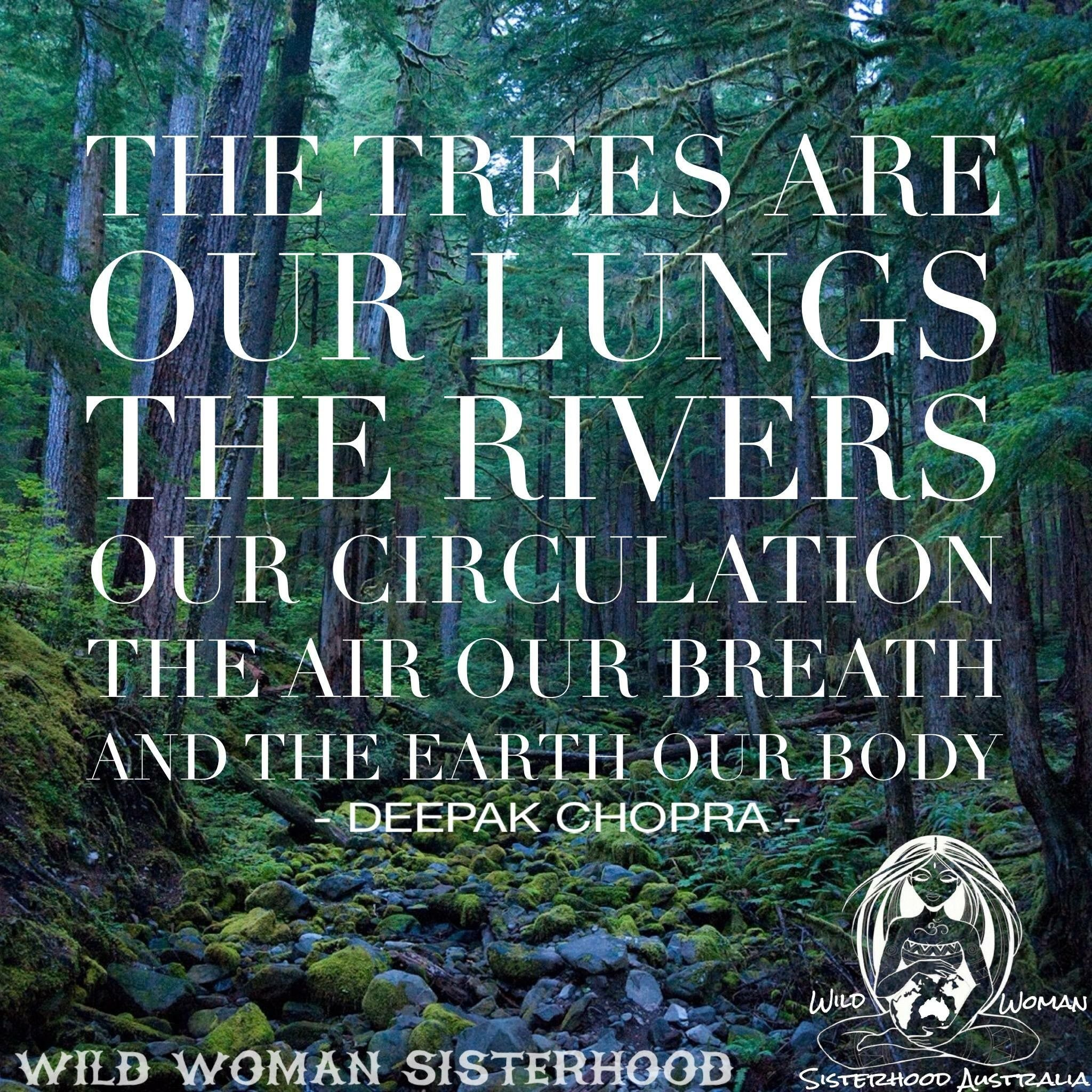 pin by michelle mohr on favorite posts quotes nature