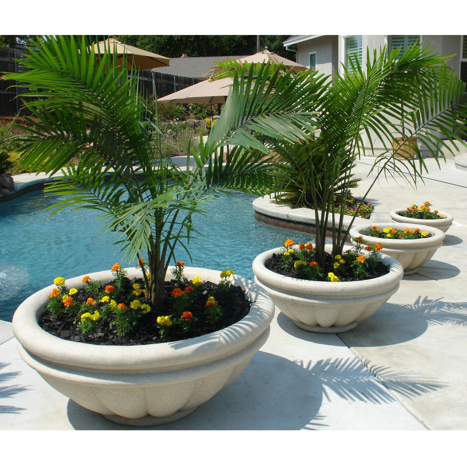 Have to have it round fiberglass roman planter for Contemporary garden planters