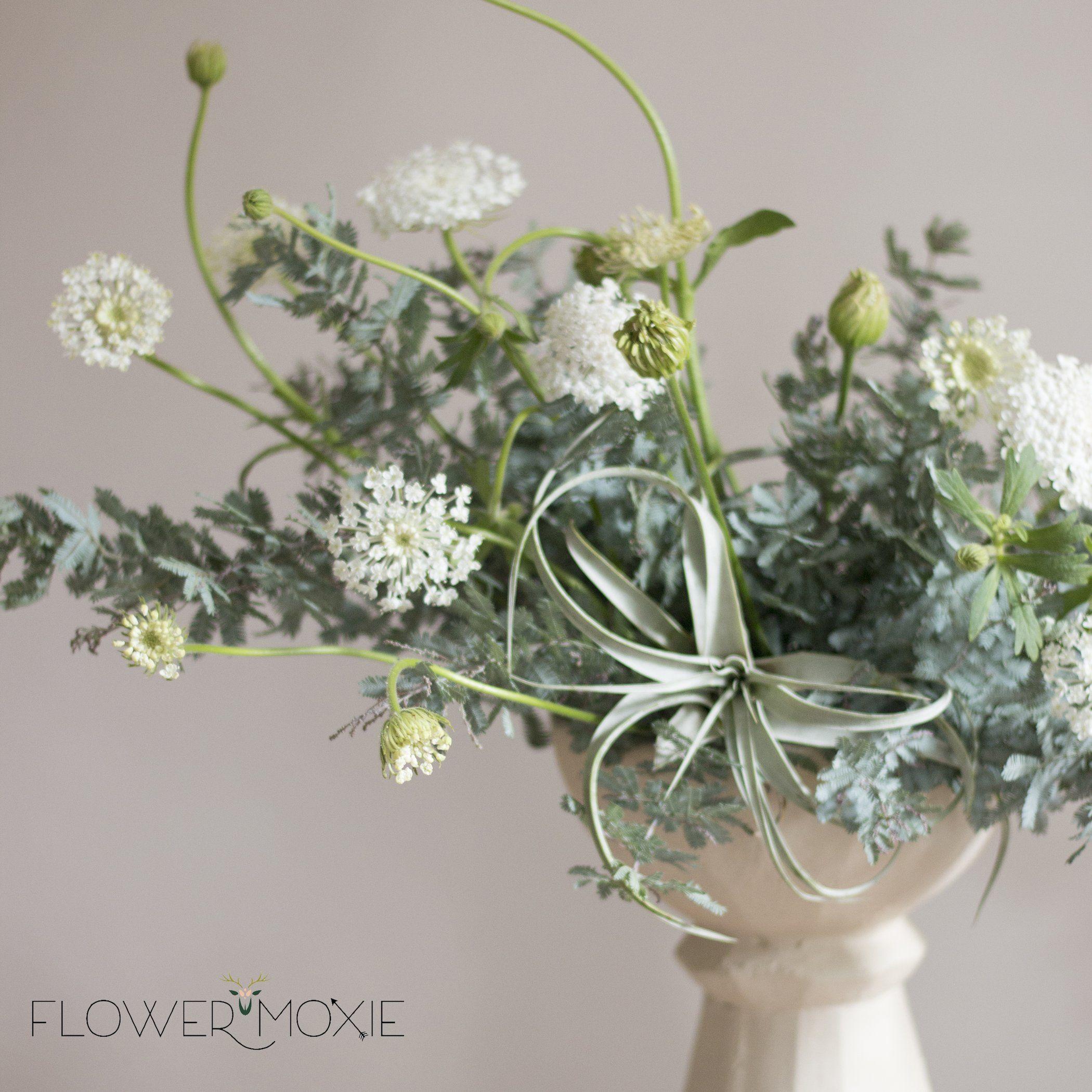 Feather Leaf Acacia Diy Bride Diy Flowers Diy Wedding How To Save Money Diy Wedding Flowers Diy Wedding Flower Centerpieces Diy Wedding Flowers Bouquet