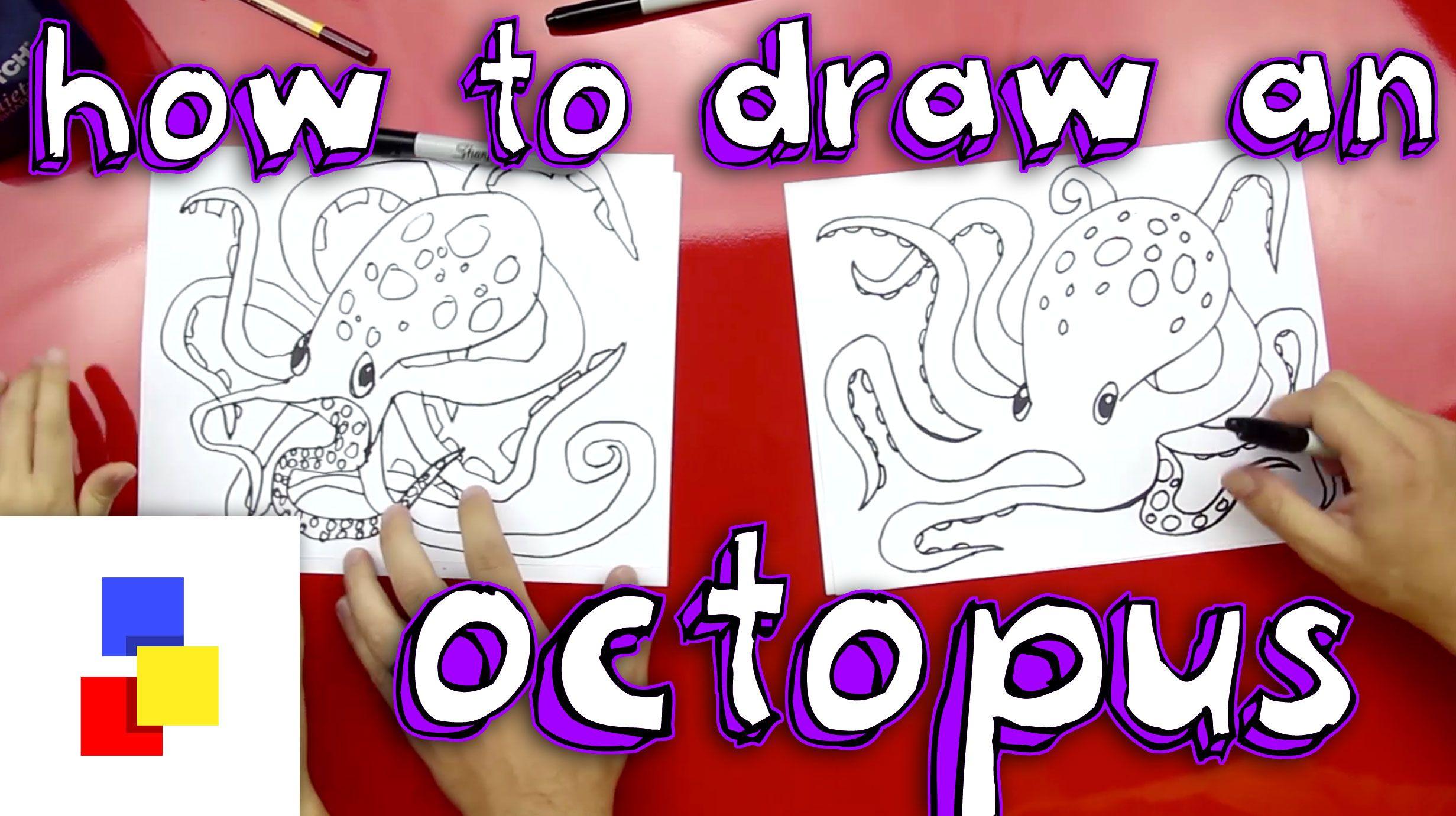 how to draw animals kids hub