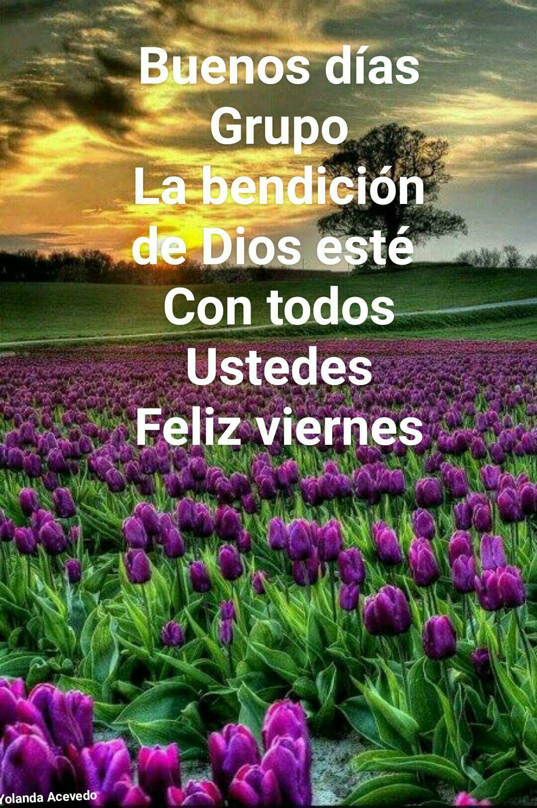 Pin De Yolanda Acevedo En Tarjetas Cristianas Feliz Viernes