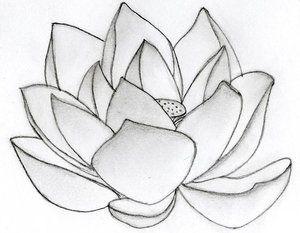 Pin by anna blake on lotus tattoo pinterest lotus tattoo and tattoo find this pin and more on lotus tattoo by anna0livia mightylinksfo