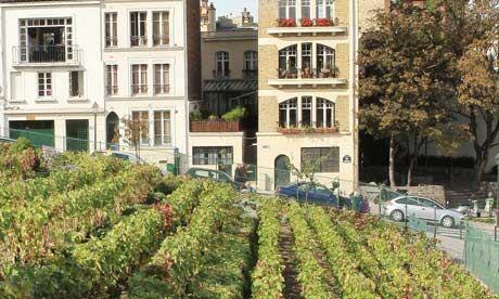 """Clos de Montmartre"""