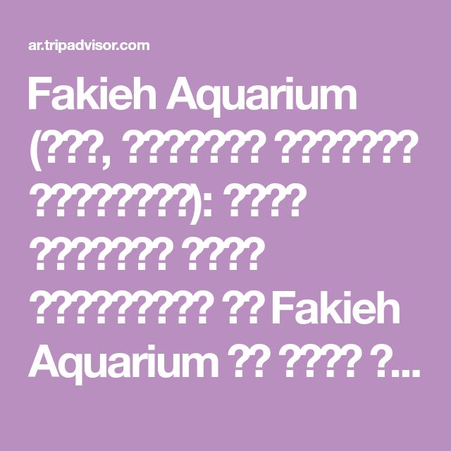 Fakieh Aquarium جدة المملكة العربية السعودية طالع تعليقات وصور المسافرين عن Fakieh Aquarium في جدة المملكة العربي Math Trip Advisor Word Search Puzzle