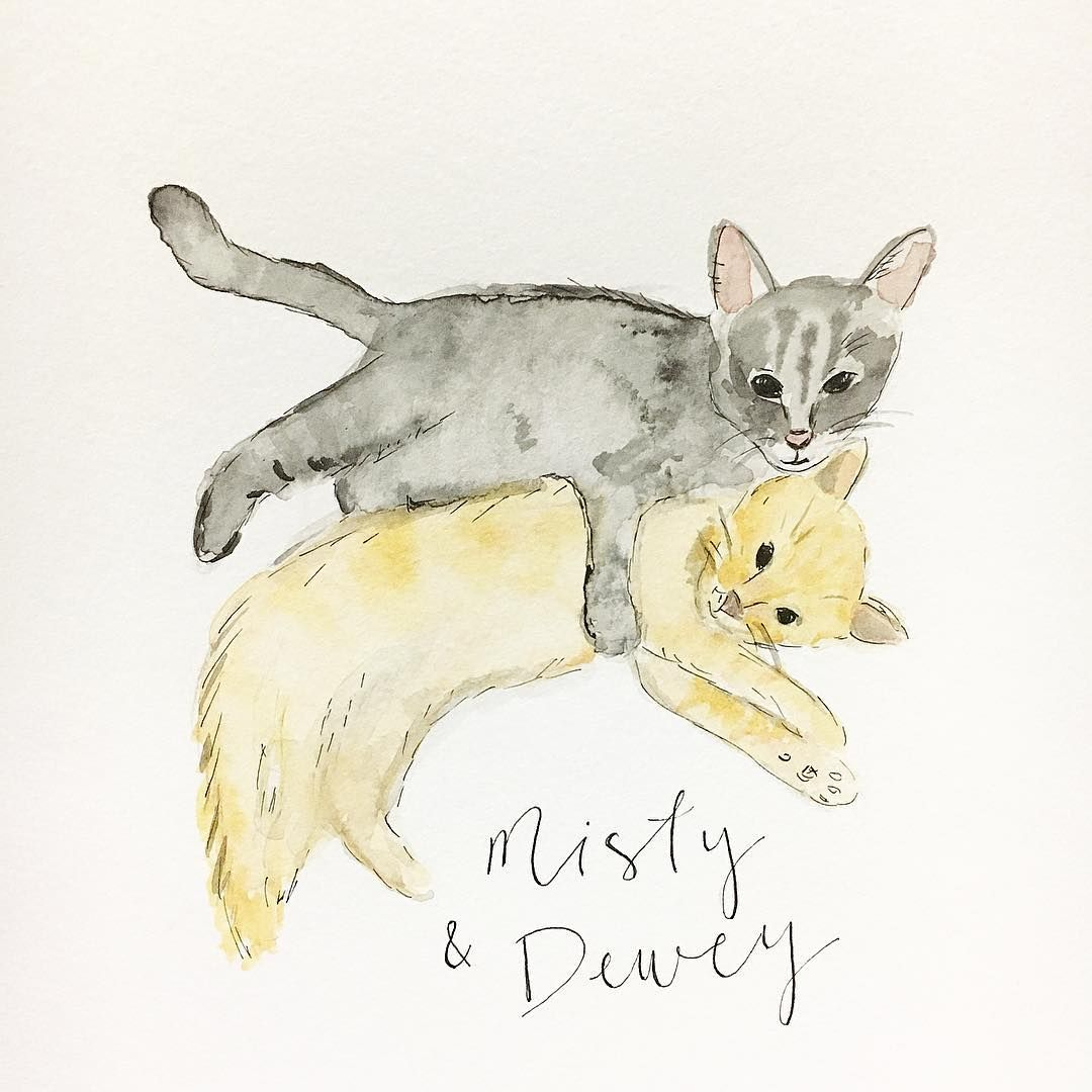 Watercolor Kittens Watercolor Art Sketches Art