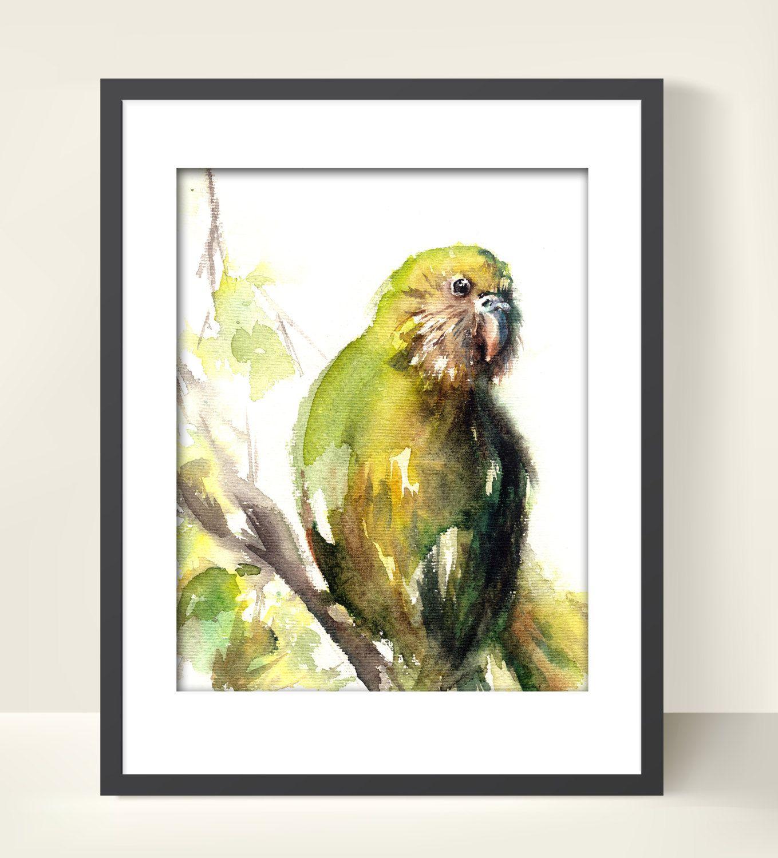 Kakapo Bird Watercolor Painting Art Print, Watercolour Bird, Wall ...