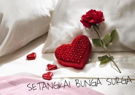 Puisi Romantis Nan Anggun Setangkai Bunga Surga Mindset Sukses Puisi Romantis Romantis Bunga