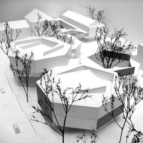 Mansilla + Tuñón Arquitectos, vi.vo.architektur.landschaft — Kunsthaus De Zurich