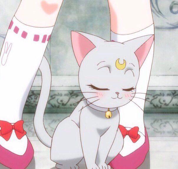 Pin by Danni on Anime pfp | Sailor moon aesthetic, Sailor ...