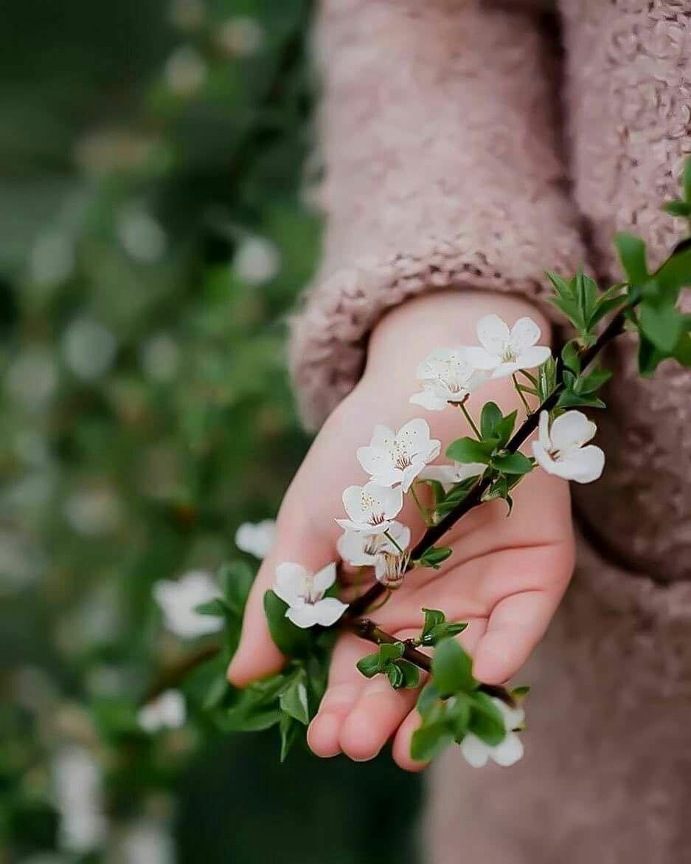 Pin De Ghada Moustafa En Flowers Fotos Con Flores Naturaleza Fotos Las Mejores Fotos Tumblr