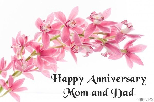 40 Anniversary Wishes For Parents Happy Anniversary Quotes For