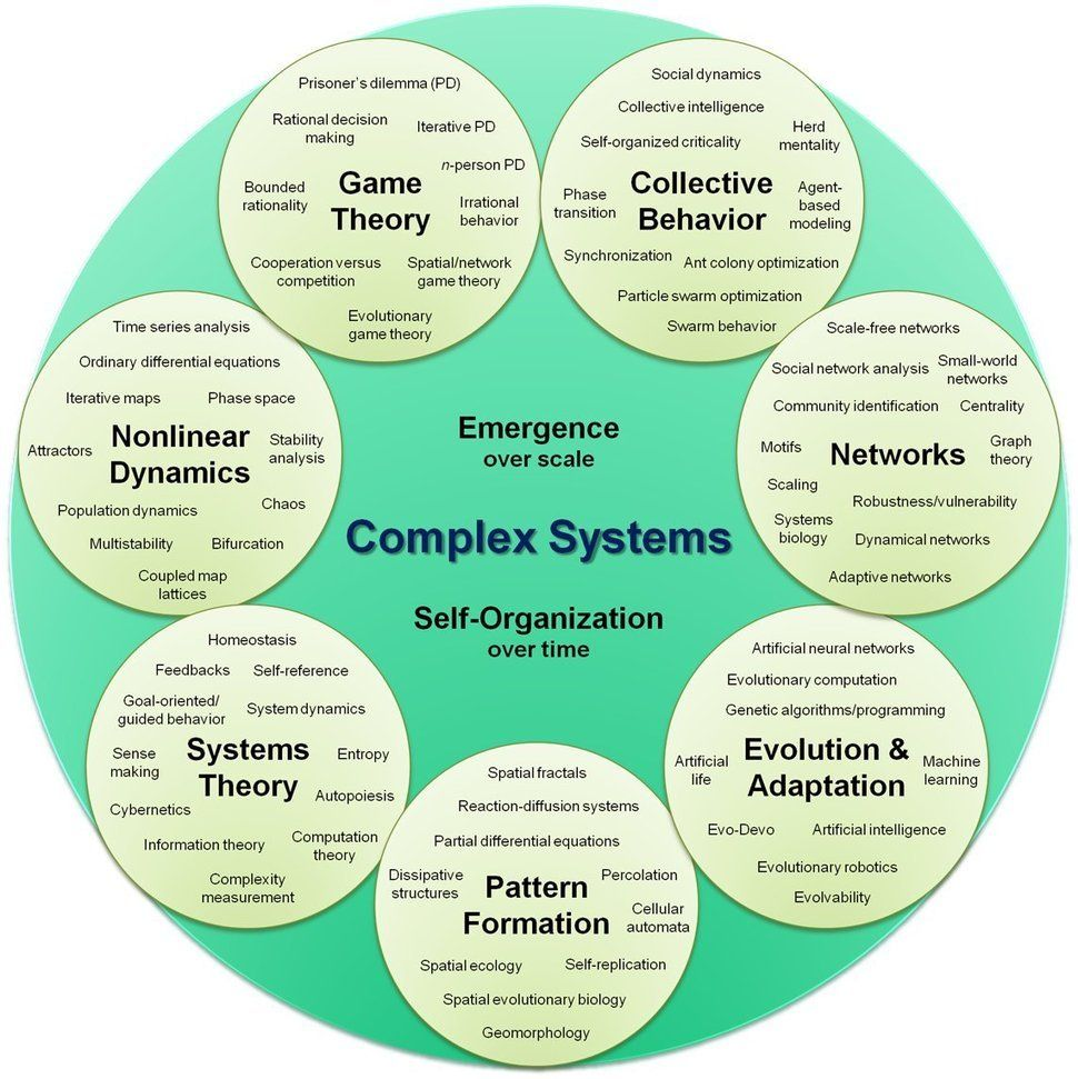 complex critical essay organization However, in complex clinical context, advanced knowledge and application of skills become challenging because of lack of confidence, knowledge, experience, critical thinking, and unfamiliarity with the environment.