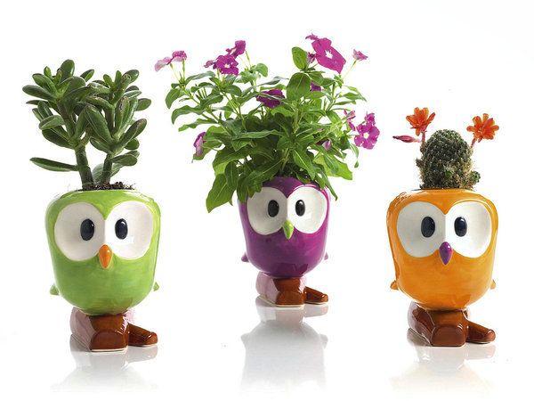 plantas para regalar | humidificador, macetas y de la navidad